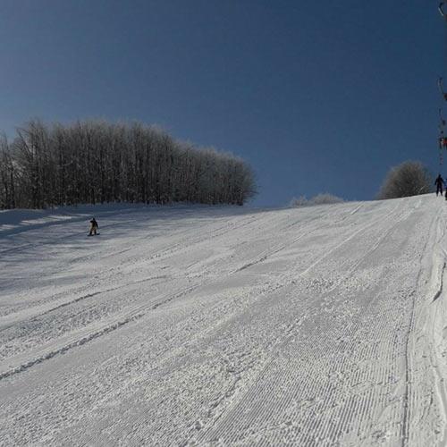 piane lupo ski